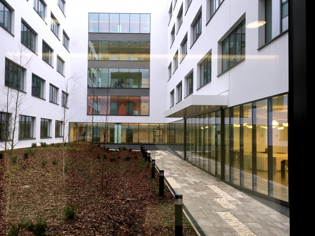 View at building's atrium