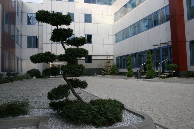 Budynek biurowy, dziedziniec wewnętrzny