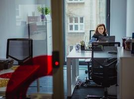 Business Link AIP DK-Med